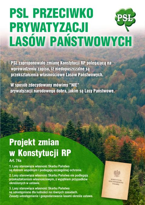 lasy_11.jpg